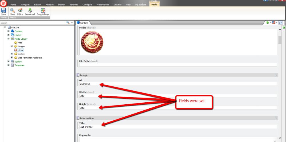 Set New Media Library Item Fields Via the Sitecore Item Web API (5/5)