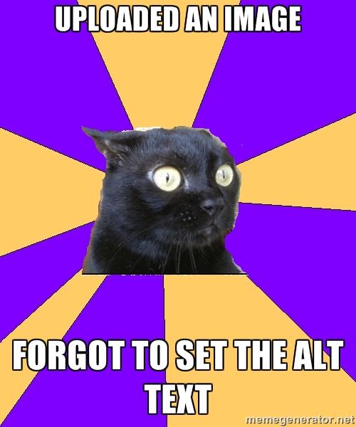 anxiety-cat