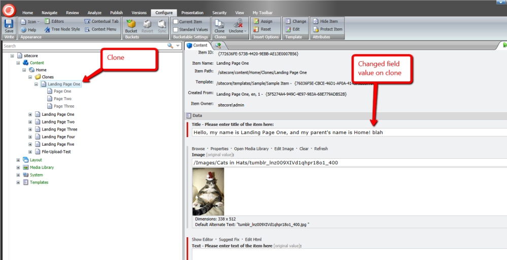 Accept All Notifications on Clones of an Item using a Custom Command in Sitecore (3/6)