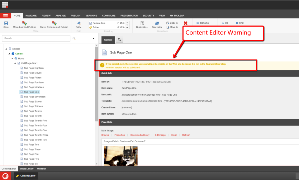 content-editor-warning-example