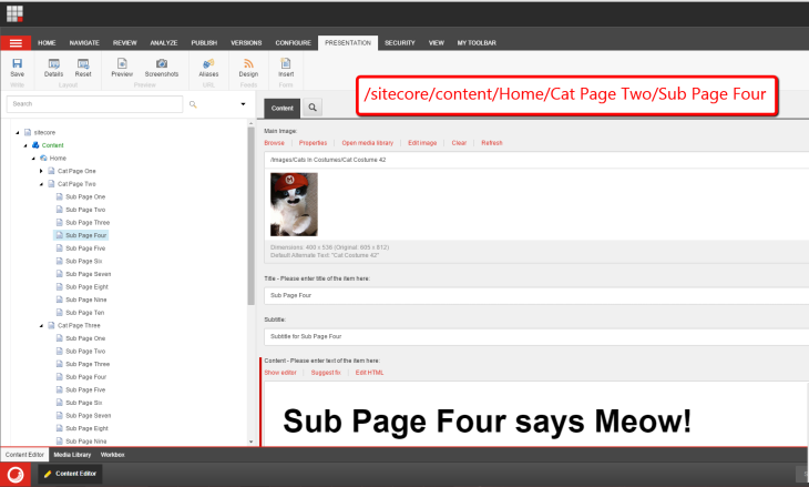 mario-content-editor